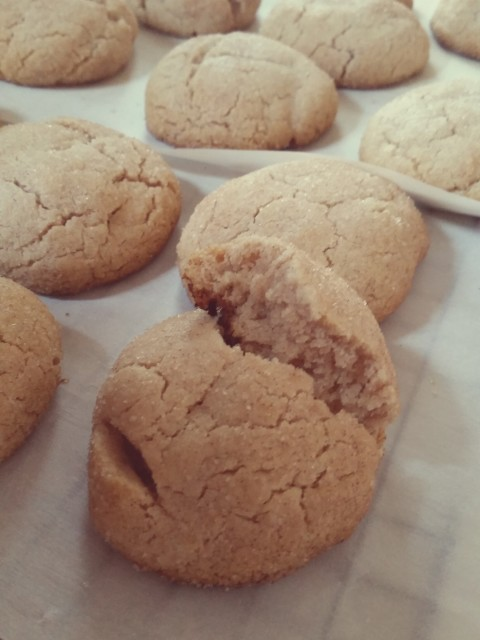 A Literary Feast -- snickerdoodles