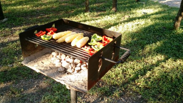 A Literary Feast -- veggies on the grill