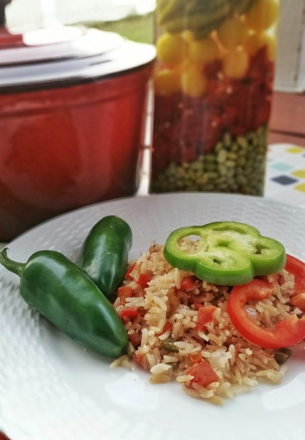 A Literary Feast | Book Review | It's News to Me | Author Interview | Olga Campos Benz | Spanish Rice